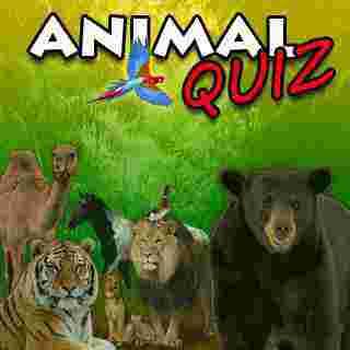 İngilizce Hayvan İsimleri